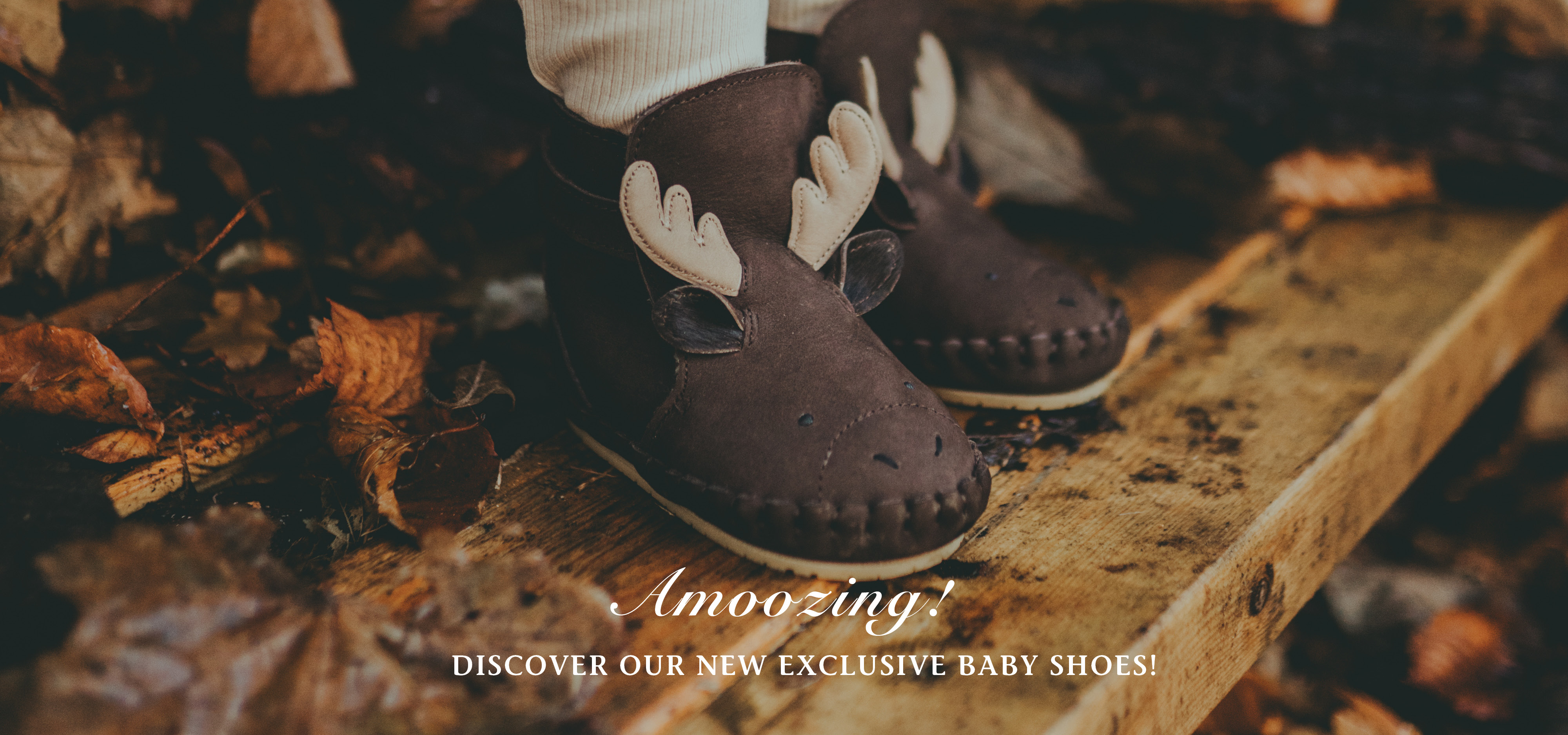 New Exclusive Baby shoes