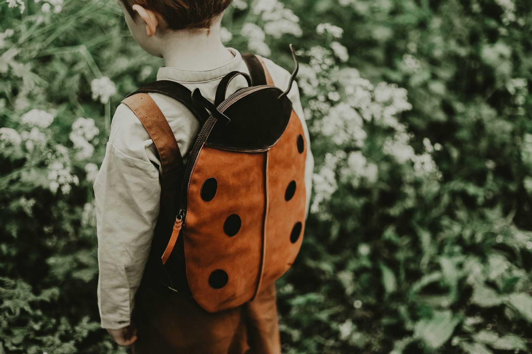 Benjie Schoolbag | Lady Bird
